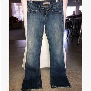 Flying Monkey flared jeweled jeans